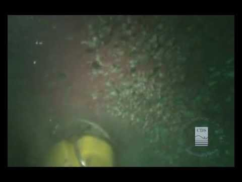 "Cabo Diving Services: ""Underwater Hull Cleaning / Limpieza Submarina de Casco"""