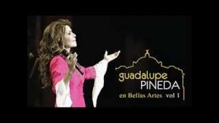 Guadalupe Pineda A donde vamos a parar?