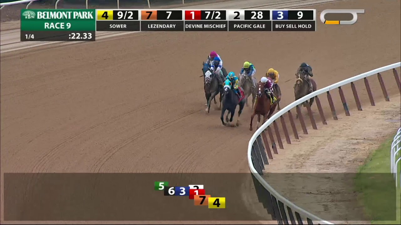 Sower - 2018 - The Jersey Girl Stakes