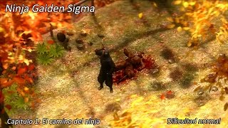 Vídeo Ninja Gaiden Sigma