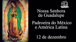 História de Nossa Senhora de Guadalupe - Padroeira da América Latina