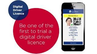 Digital driver licence trial