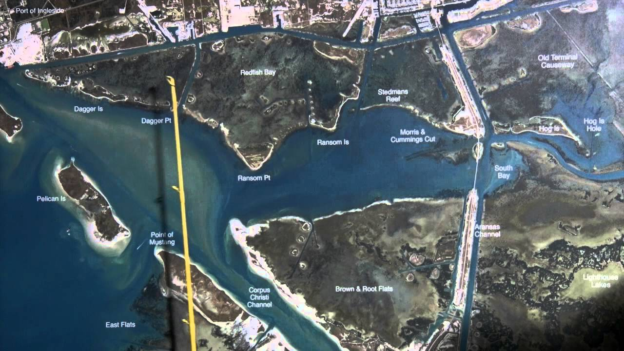 Texas fishing tips fishing report august 20 2015 aransas for Aransas pass fishing