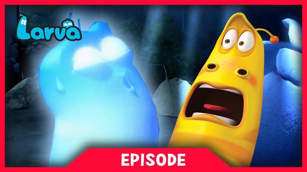 larva - ghost