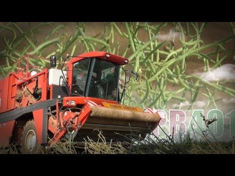 Récoltes : des colosses aux doigts de fées ! PowerBoost N°401 (18/08/2017)