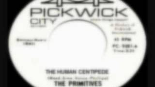 "The Primitives ""The Human Centipede"" Unreleased Lou Reed demo"