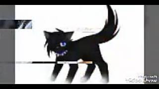 Коты воители(картинки)