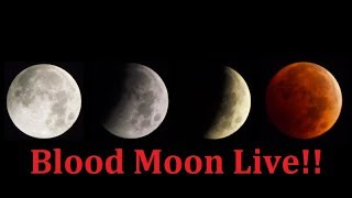 LIVE Blood Moon: The Rare Super Blue Blood Moon is finally here !