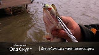 Как рыбачить в нерестовый запрет ОлдСкул 50