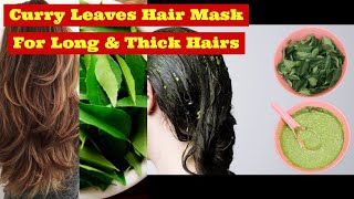 Curry leaves hair mask I Curry Leaves Herbal Hair Mask for Long Thick Beautiful Hairs