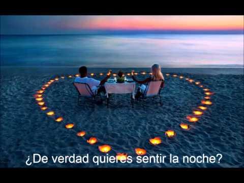 Do you really want to feel the night  Traducida en español
