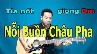 NỖI BUỒN CHÂU PHA Guitar Solo Tỉa Nốt Tông Dm Để TỰ HỌC ĐÀN | Vietnam Music