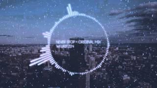 Wkuritzen - Never Stop (Original Mix)