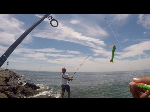 Shore Fishing for Fluke Using Gulp! Products (Barnegat Light, NJ)