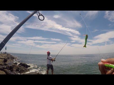 Shore Fishing For Fluke Using Gulp! Products (Barnegat Light, NJ)