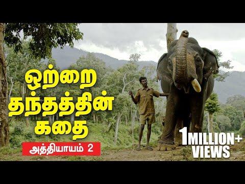 நேருக்கு நேர் மோதிய மதம் பிடித்த யானைகள்! | Kumki Series | Episode 2