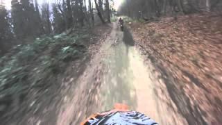Поездка на мотоциклах по осеннему лесу.
