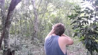 Tiros con una escopeta Calibre 36 y 32...