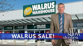 Tariffs Could Drive Up Walrus Prices