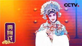 黄梅戏《女驸马》《牡丹亭》《憨哥与巧妹》《天仙配》 【名段欣赏 20151003】