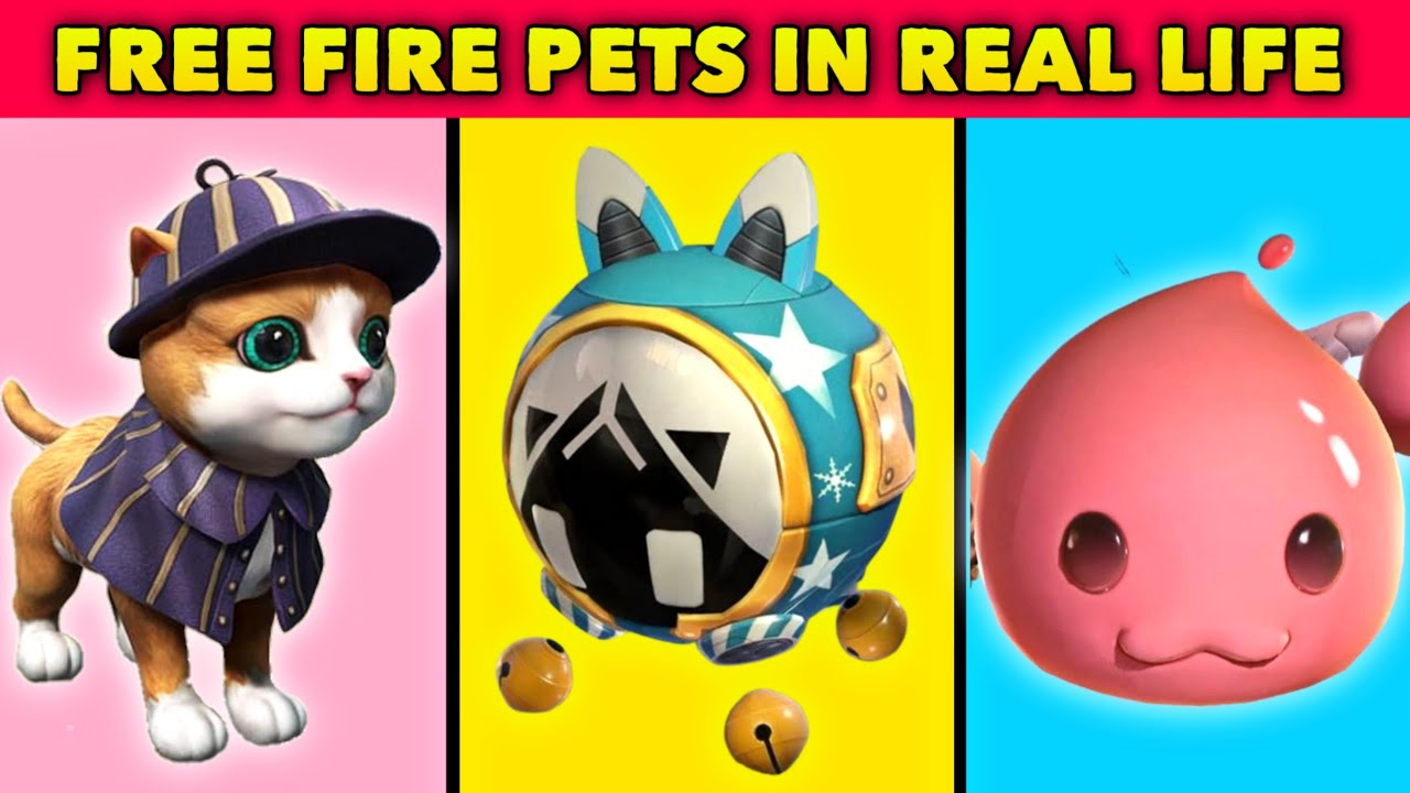 (Part - 6) FREE FIRE PETS IN REAL LIFE || Origin of Free Fire Pets || Million Fact