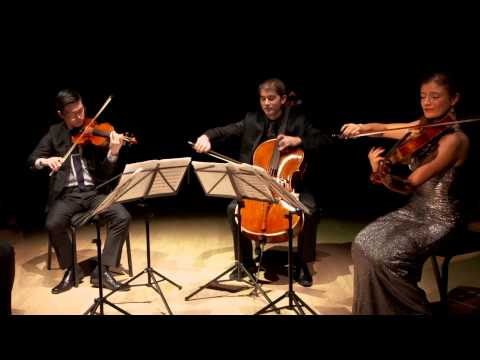 Barber: Adagio for Strings, Original Version, Dover Quartet
