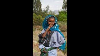 Raya Ethiopian Music Mengasha Redae   Geday Mama