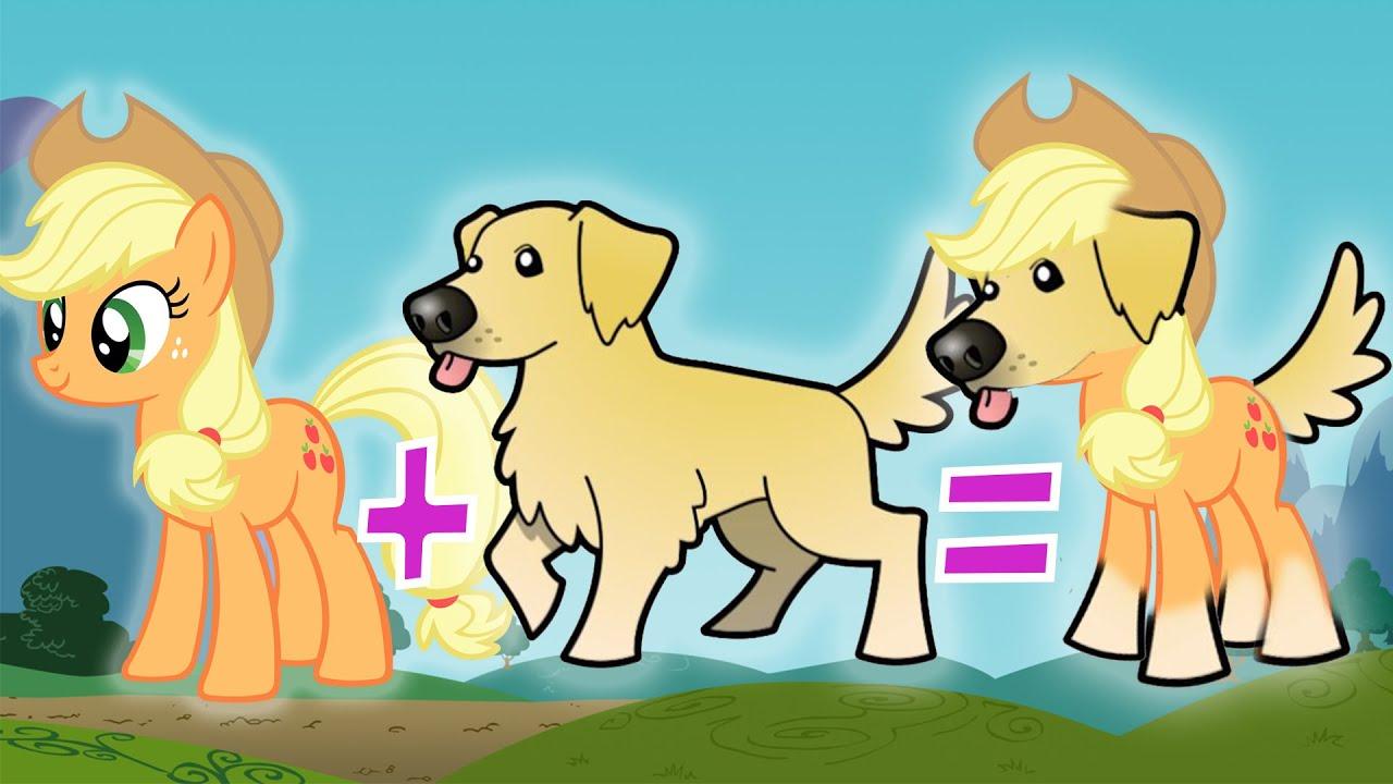 MASHUP My Little Pony Dog Breeds
