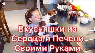 Как приготовить из сердца печени вкусняшки для собак своими руками