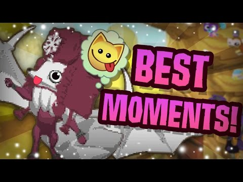 BEST ANIMAL JAM MOMENTS!