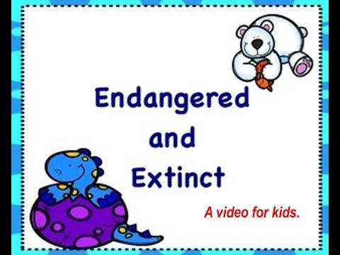 Endangered and Extinct animals