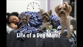 DAY IN THE LIFE OF A DOG MOM | COLLAB with Dog Paw Blog