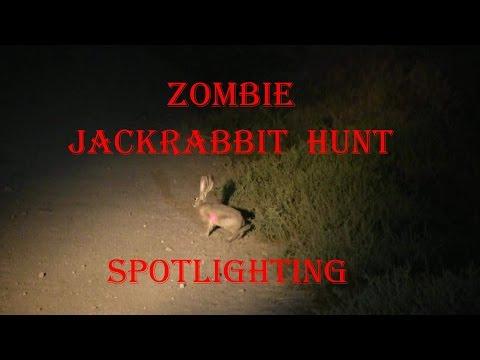 Zombie Jackrabbit Hunt Spotlighting