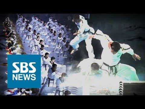 닮은 듯 다른 남·북한 태권도…어떻게 다를까? / SBS / 주영진의 뉴스브리핑