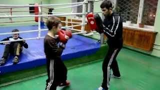 тренировка кикбоксинг кик бокс
