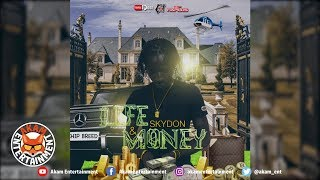Skydon - Life & Money - February 2019
