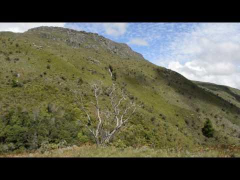 Nyanga's Rolling Hills
