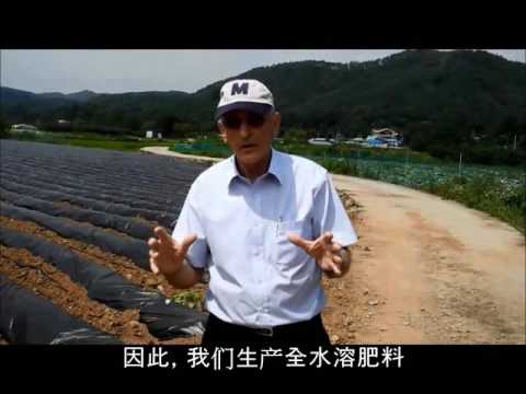 Farm Hannong WSF - S Feed Ca(Chinese)