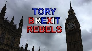 Tory Rebels Plan to Derail the Great Repeal Bill Exit Date!