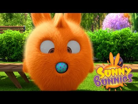 Cartoons for Children | Sunny Bunnies BALLOON BLUES | Funny Cartoons For Children