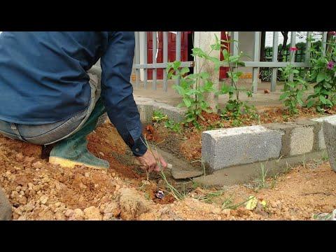 Tạo khuôn viên hoa cho sân nhà nho nhỏ cho không gian thêm đẹp   Vlog 40