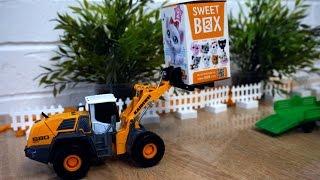 Видео про машины и коробочки с сюрпризами. Игрушки для детей