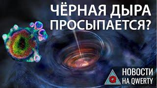 Пробуждение черной дыры в центре Млечного пути и органоиды-киборги. Главное на QWERTY №96