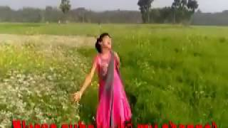 Dana Kata Pori Video Song Entertainment 2017