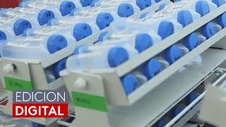 La FDA autoriza la primera prueba de saliva para detectar el coronavirus