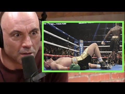 Joe Rogan - Deontay Wilder Thinks Tyson Fury Didn't Beat the Ten Count