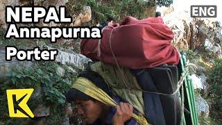 【K】Nepal Travel-Annapurna[네팔 여행-안나푸르나]히말라야를 오르는 세계 최고의 전사 '포터'/Porter/Trekking/Hill tribes