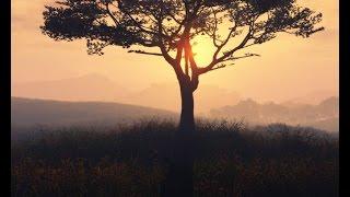 Season In The Sun -  Tony Phuong [Tan Nhac] HD 1080p