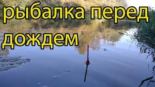 Рыбалка на реке поплавочной удочкой 21 сентября 2021