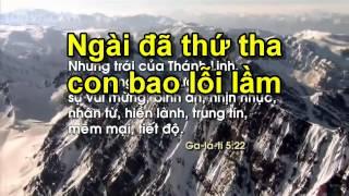 TP011 Trọn Cả Tấm Lòng Tron Ca Tam Long TVCHH bài 002 HapDanChamCom Thánh Ca Tôn Vinh